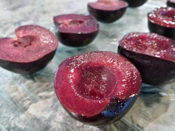 roasted-ginger-plums-(5)